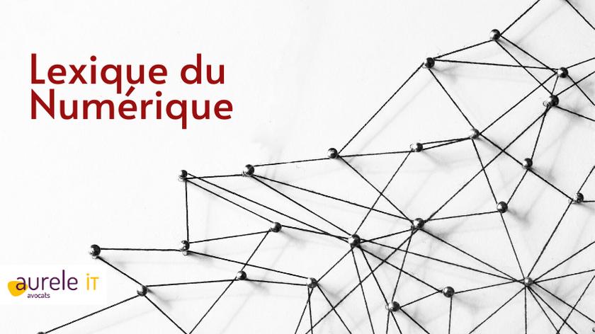 lexique du Numérique par Aurele IT Avocat